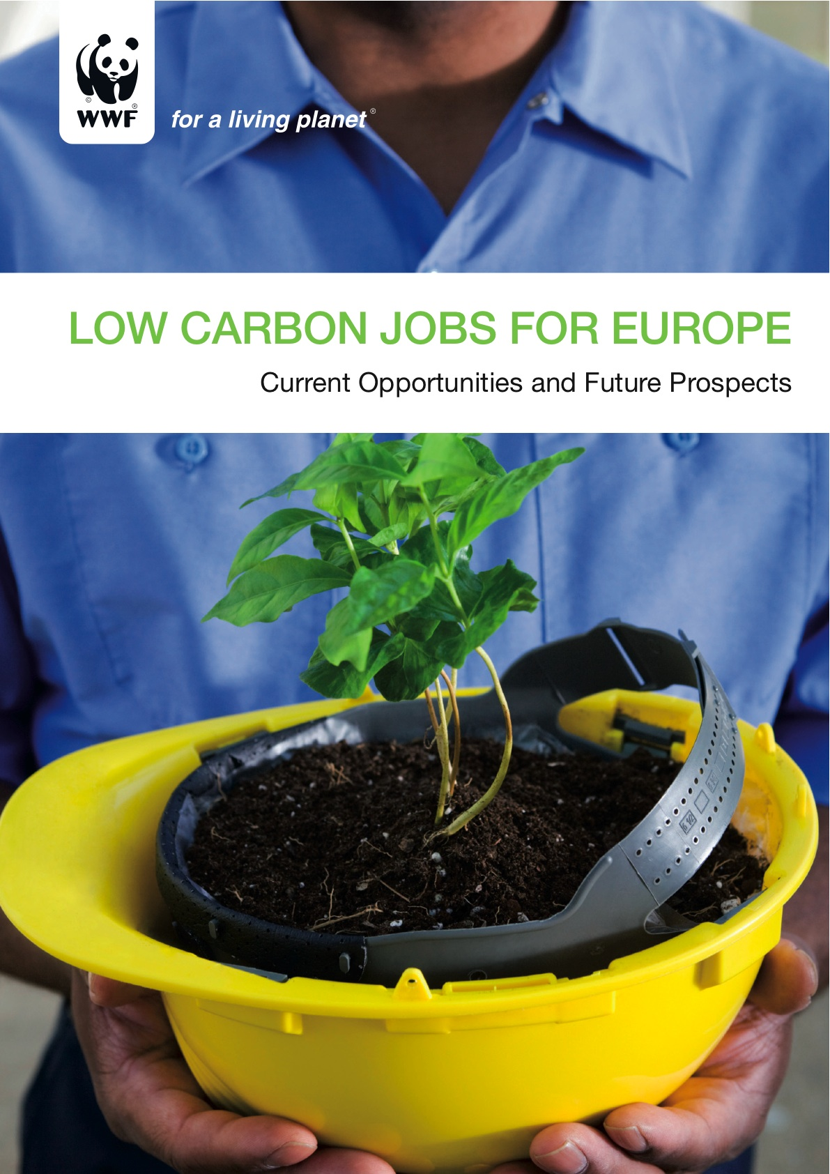 low carbon jobs final