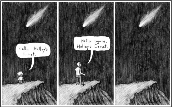 halleys comet