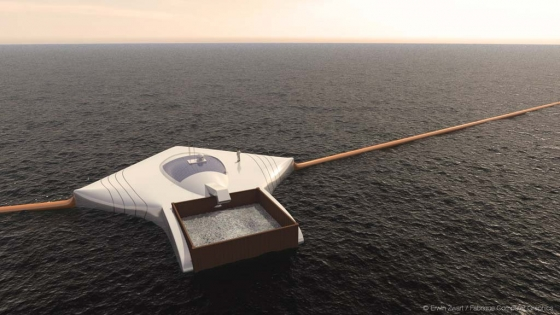 Ocean array 560x315 1