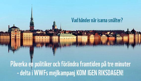 WWFs politik