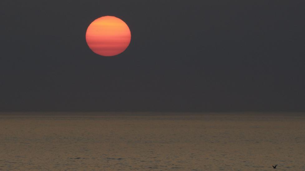 svag sol