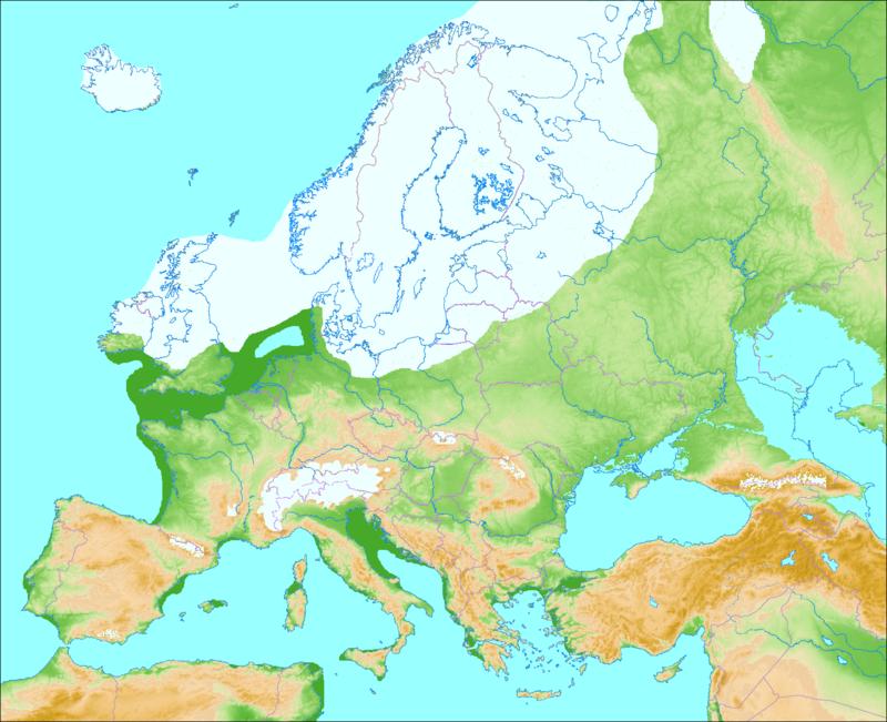 istid Europa
