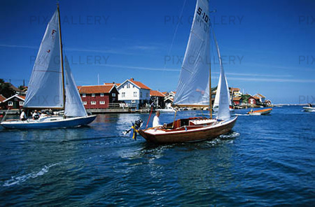 sommar segling
