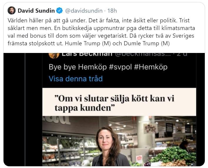 David Sundin
