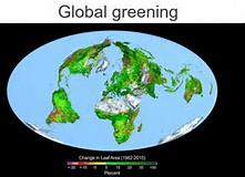 greening 5