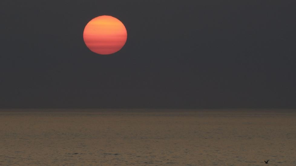 solar dimming