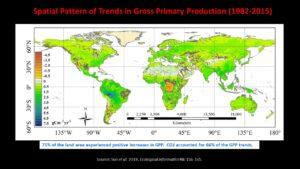 Global greening 1982 2015