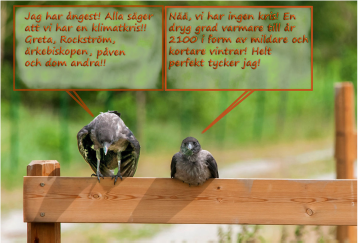 faglar samtalar