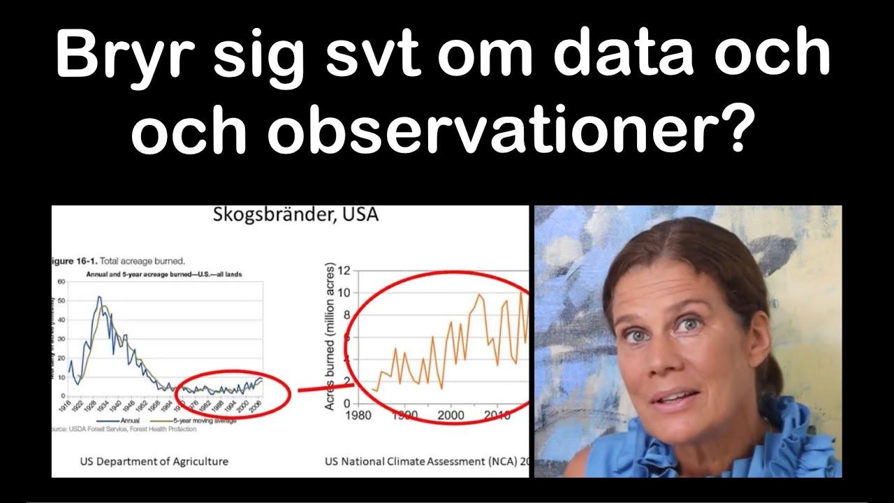 Elsa om SVT